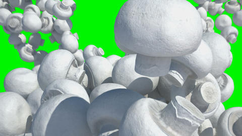 tumbling mushrooms Stock Video Footage