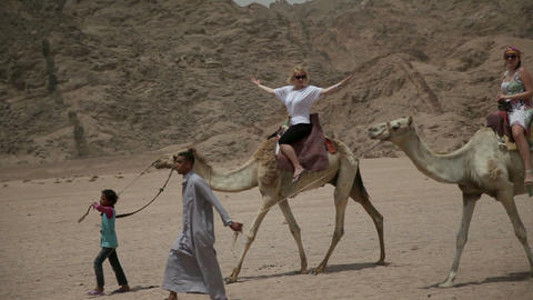 Kids are leading the camels with tourists Footage
