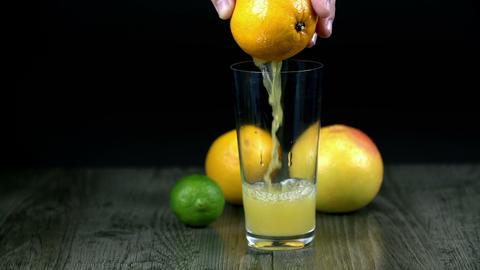 citrus 059 S HD Footage
