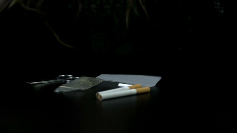 Smoking paper falls on the table next to two cigar Footage
