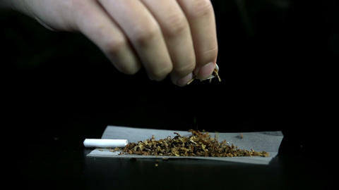 Spreading tobacco across the rolling paper with fi Live Action