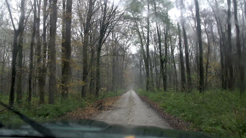 Driving on a country road through the woods Footage