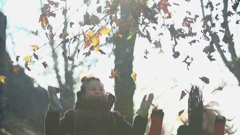 Leaves disperse in the air in slow motion after tw 影片素材