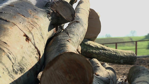 Wood 067 HD stock footage