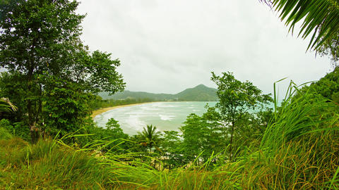 View through the trees on an empty beach on a clou Footage