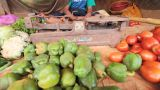 India.Junior Trader Vegetables stock footage