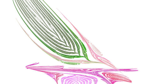 Feather. With alpha channel Animation