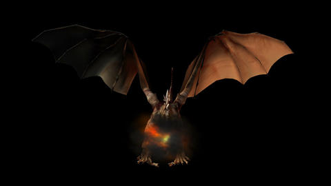 Dragon 1 HD Sound Stock Video Footage