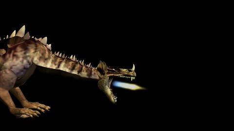 Dragon 3HD and Sound Stock Video Footage