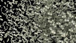 dollar transition Stock Video Footage