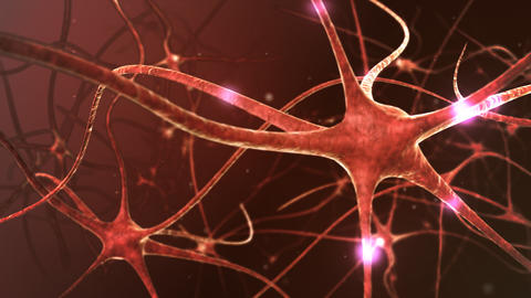 Neuron network Stock Video Footage