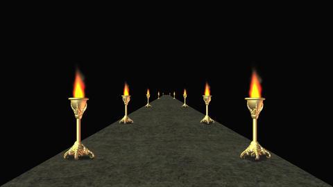 columns 13 Animation