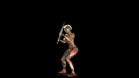 Warrior 5 Stock Video Footage