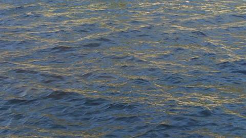 water ripple closeup 01 Stock Video Footage
