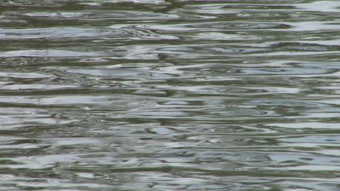 water ripple closeup 07 Stock Video Footage
