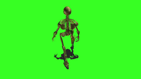 Skeleton 5 Stock Video Footage
