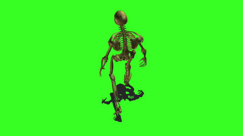 Skeleton 5 Stock Video Footage