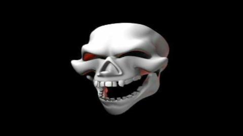 skull 13 Stock Video Footage