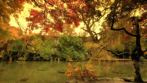 Autumn / Fall 1