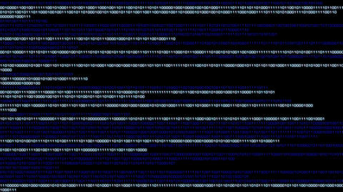 Binary World v2 03 Animation