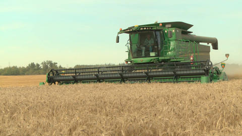 Wheat harvesting with combine 04 Live Action