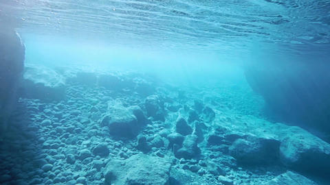 Swimming Under The Surface Of The Ocean stock footage