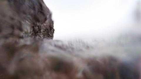 View of ocean at surface level against rock Acción en vivo
