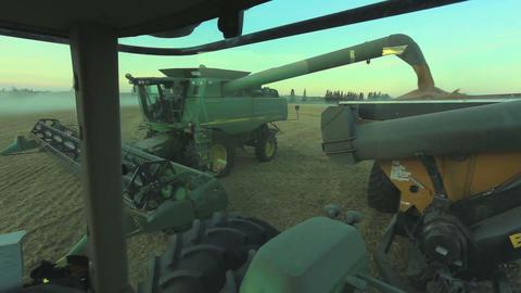 Combine Harvesting H Live Action