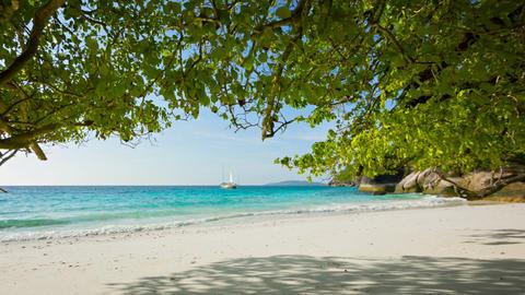 Empty sandy beach. Beautiful tropical landscape Footage