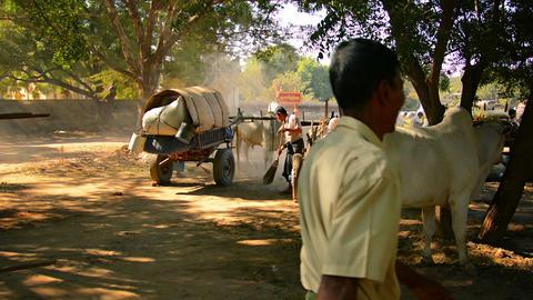 BAGAN. MYANMAR - 11 JAN 2014: Merchants Restoring stock footage