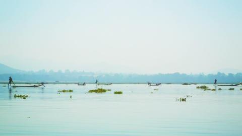 Numerous local fishermen. Burma. Inle Lake Footage