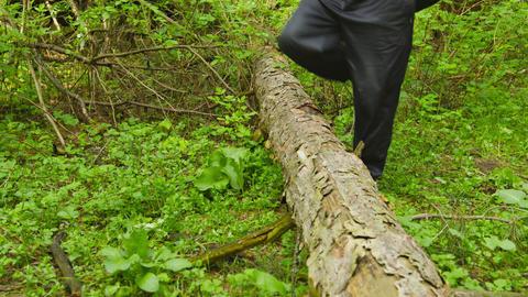 A man walking through the woods crosses a fallen t Footage