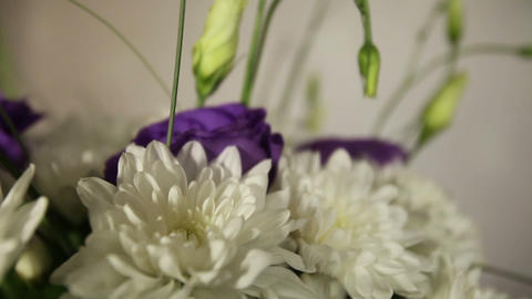 Bridal Bouquet Of White Chrysanthemums stock footage