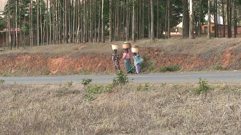 Malawi: african women walk on a road Stock Video Footage