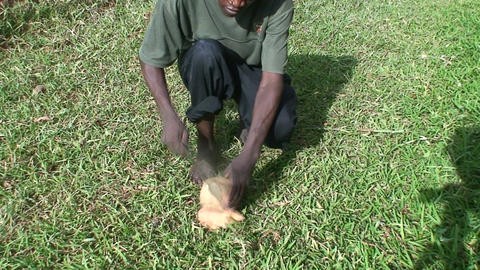 Malawi: african teen cuts coconut 1 Stock Video Footage