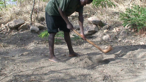 Malawi: african man digs a row in a ground 1 Stock Video Footage