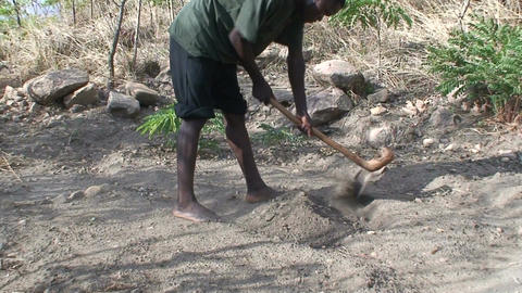 Malawi: african man digs a row in a ground 1 Footage