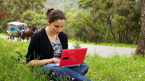 beautiful girl using computer in countryside, phaeton... Stock Video Footage