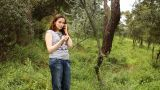 Beautiful Girl Talking On The Phone In Countryside stock footage