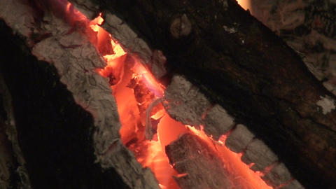 Fireplace burning wood log two, close-up Stock Video Footage