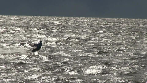 Kite surfing seven in the Baltic sea Stock Video Footage