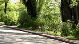 Park At Spring stock footage