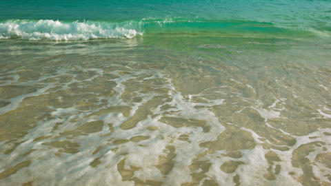 Clear water. Surf on a sandy tropical beach Live Action
