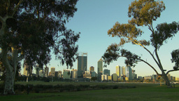 Trees Framing The City Of Perth Skyline stock footage