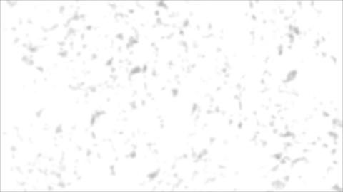 Abstract noise - gray spots on a white background Animation