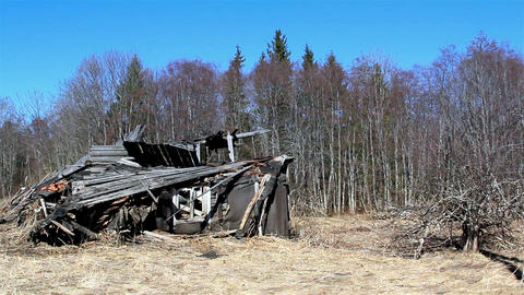 A burned wooden house on the forest Footage