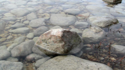 Lots of rocks on the sea bed Footage