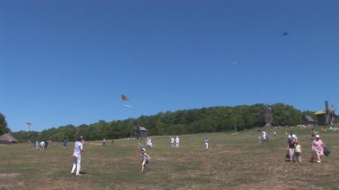 kite 14 Footage