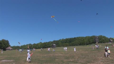 kite 14 Stock Video Footage