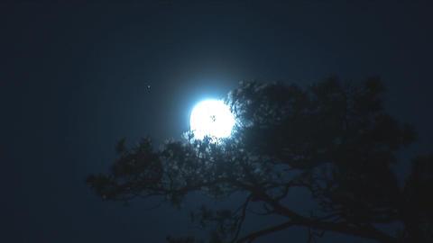 moon 2 Stock Video Footage